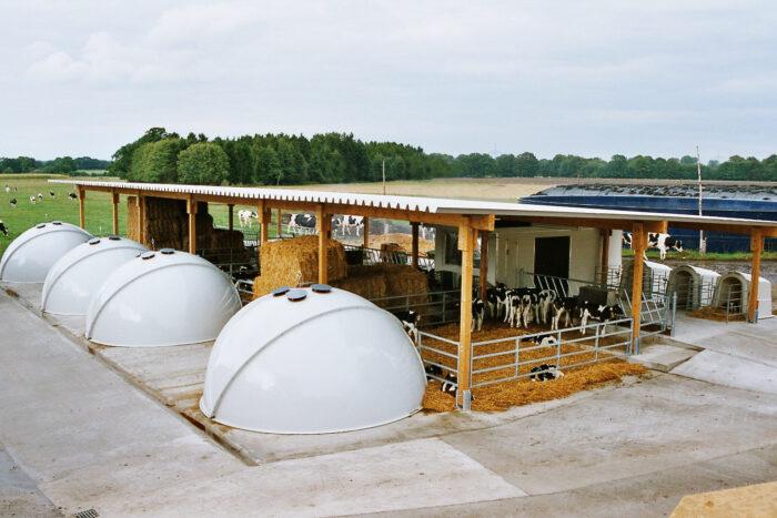 Dieses Bild zeigt ein IgluSystem mit insgesamt vier Großraumiglus und einer entsprechenden Überdachung.