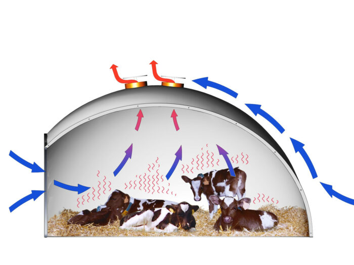 Diese grafische Darstellung verdeutlicht den Luftstrom (Bernoulli-Effekt) im Holm & Laue Iglu.